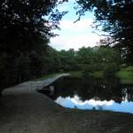 Rybník u penzionu