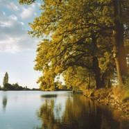 Pozvánka na výlov rybníka